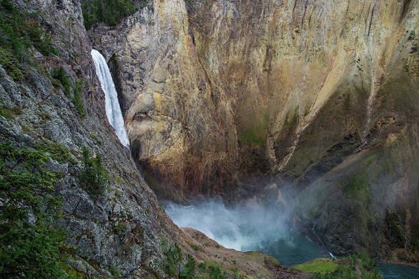 High Water Mark Photograph - Lower Yellowstone Falls by Mark Newman