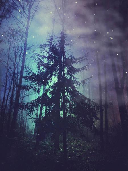 Photograph - Luminous Forest by Dirk Wuestenhagen