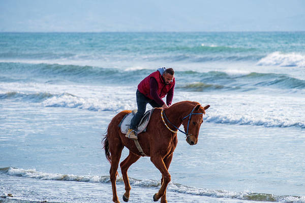 Photograph - Man Riding On A Brown Galloping Horse On Ayia Erini Beach In Cyp by Iordanis Pallikaras