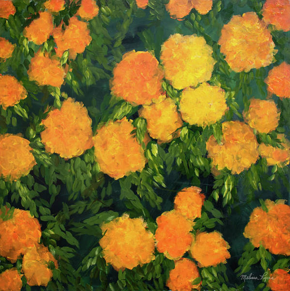 Wall Art - Painting - Marigolds by Melissa Lyons
