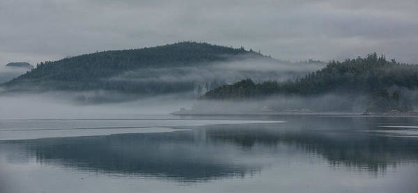 Photograph - Misty Morning by Randy Hall
