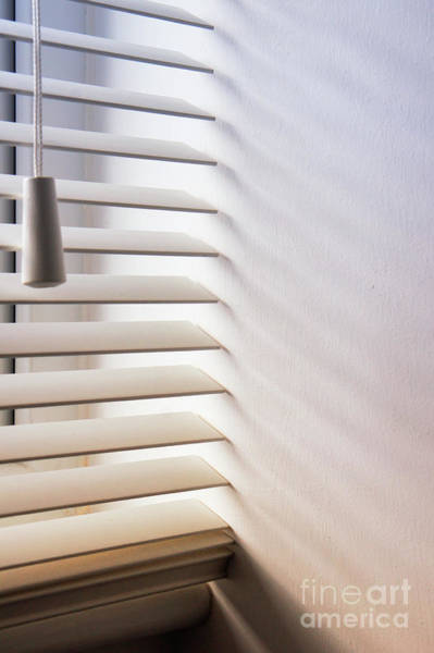 Wall Art - Photograph - Modern Window Blind by Tom Gowanlock