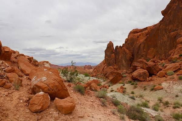 Photograph - Mojave by Sagittarius Viking