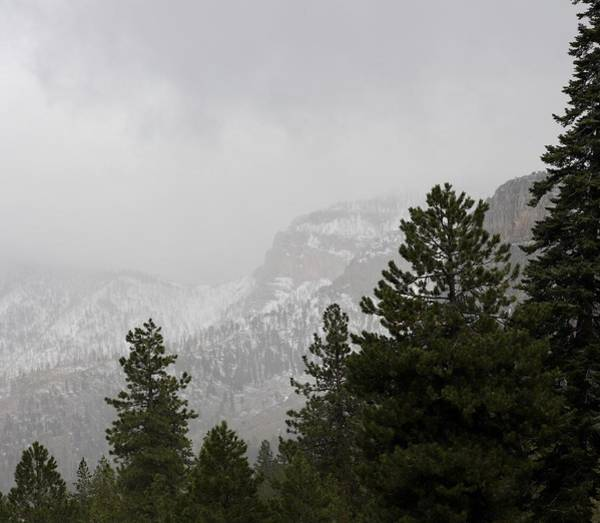 Photograph - Mount Charleston by Sagittarius Viking