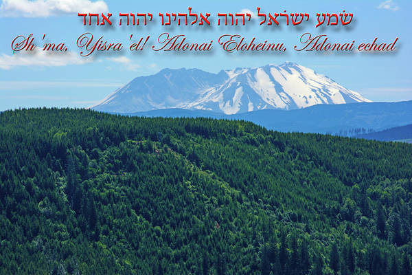Photograph - Mount Saint Helens From Paradise by Tikvah's Hope