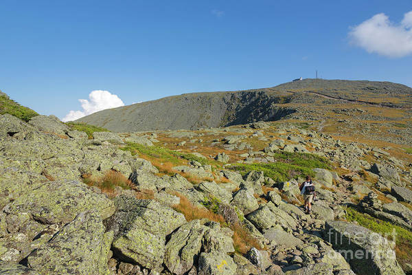 Photograph - Mount Washington - New Hampshire, White Mountains by Erin Paul Donovan