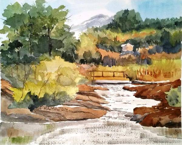 Painting - Mountain Run Off by Larry Hamilton