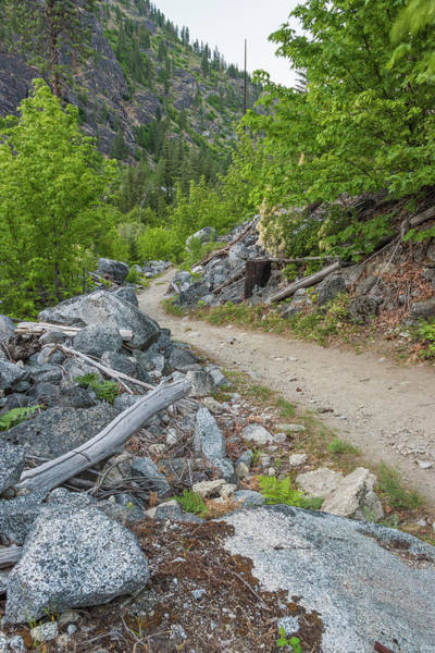 Photograph - Mountain Trail by Kristopher Schoenleber