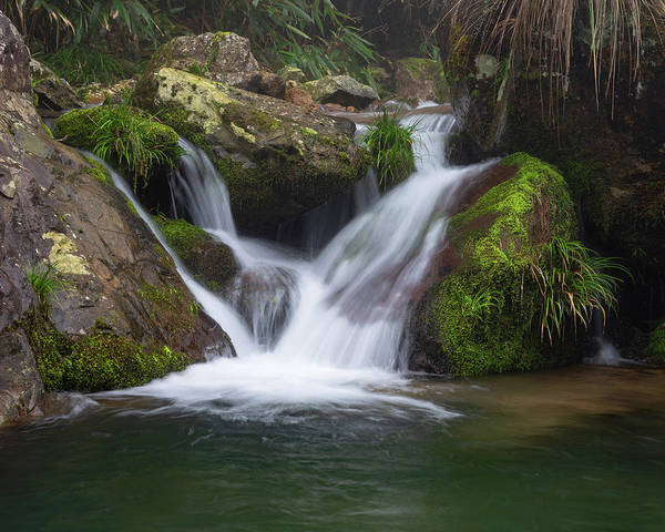 Photograph - Mountain Waterfall IIi by William Dickman