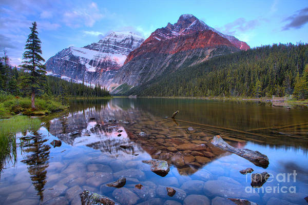 Photograph - Mt. Edith Cavell 2019 Sunrise Reflections by Adam Jewell