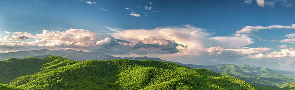 Photograph - Mt. Mitchell by Joye Ardyn Durham