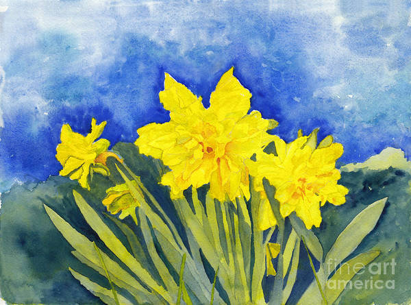 Wall Art - Painting - Naturalized Daffodils On The Farm by Conni Schaftenaar