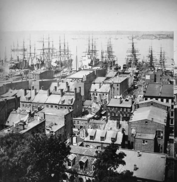 1850 Wall Art - Photograph - New York Harbour by William England