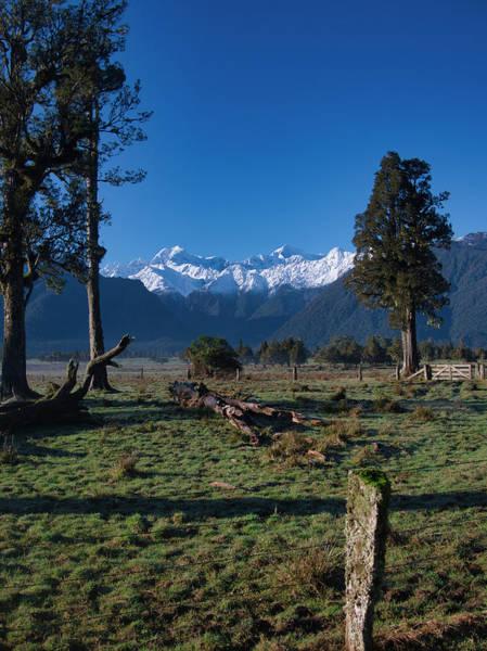 Photograph - New Zealand Alps by Steven Ralser