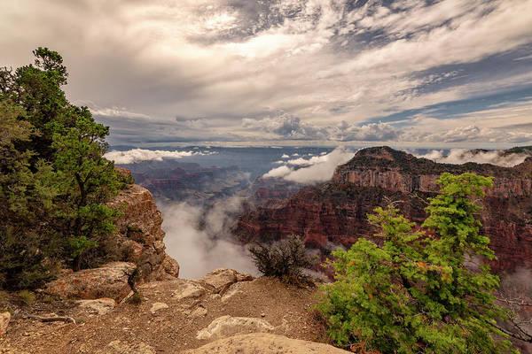 Wall Art - Photograph - North Rim Fog 1 - Grand Canyon National Park - Arizona by Brian Harig