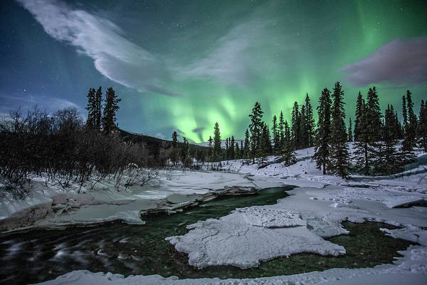 Photograph - Northern Lights Above Fish Lake by Jonathan Tucker