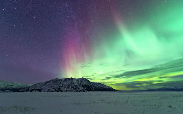 Photograph - Northern Lights Over Kluane Lake by Jonathan Tucker