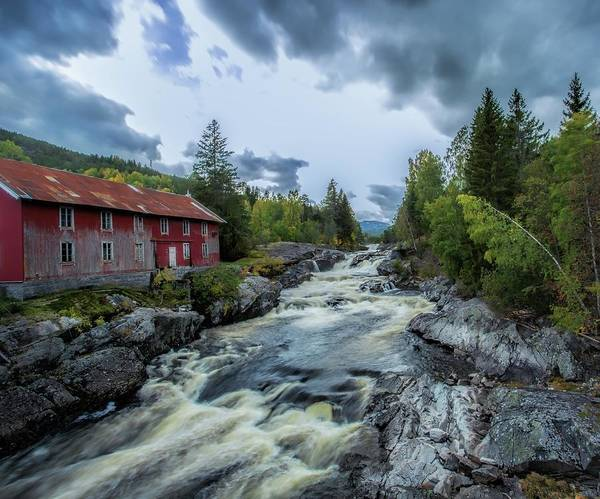 Photograph -  Norwegian Nature by Rose-Marie Karlsen