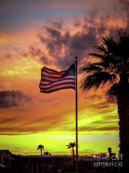 Wall Art - Photograph -  Old Glory by Robert Bales