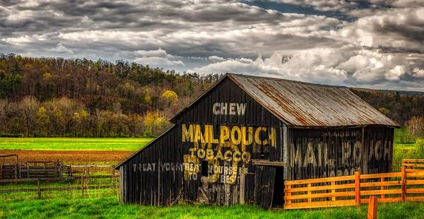 Wall Art - Photograph - Old Mail Pouch Tobacco Barn by Mountain Dreams