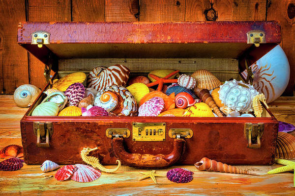 Wall Art - Photograph - Old Suitcase With Seashells by Garry Gay