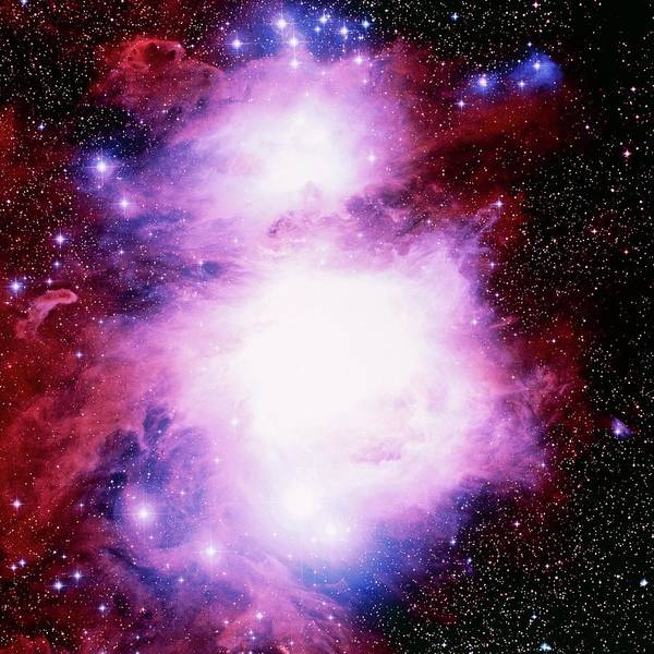 Dust Photograph - Optical Image Of The Orion Nebula by Celestial Image Co.