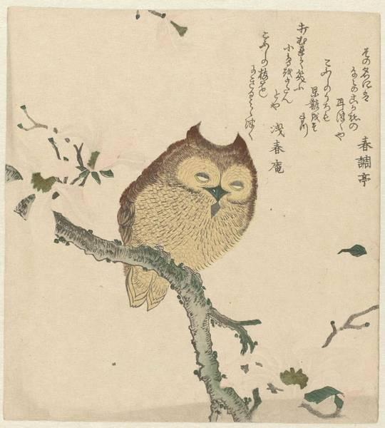 Wall Art - Painting - Owl On A Magnolia Branch, Kubota Shunman, C. 1890 - C. 1900 by Kubota Shunman