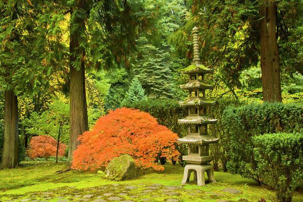Wall Art - Photograph - Pagoda, Autumn Landscape, Portland by Michel Hersen