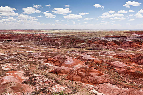 Petrified Forest Photograph - Painted Desert, Arizona by Bjorn Holland