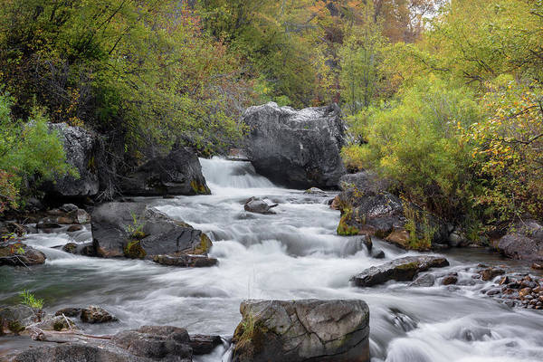 Photograph - Palisades Creek by Ronnie and Frances Howard