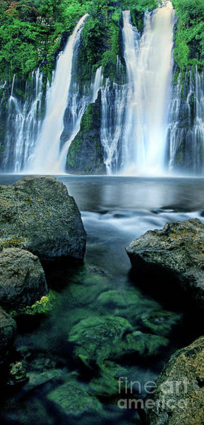 Photograph - Panorama Burney Falls Mcarthur Burney State Park Calif by Dave Welling
