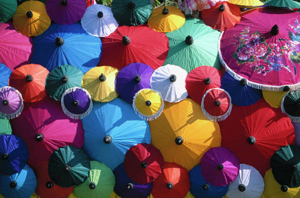 Parasol Photograph - Parasols by Buena Vista Images