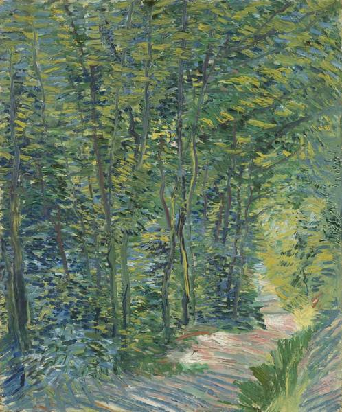 Wall Art - Painting - Path In The Woods by Vincent van Gogh