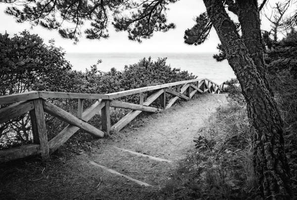 Photograph - Trail To The Beach by Carolyn Derstine