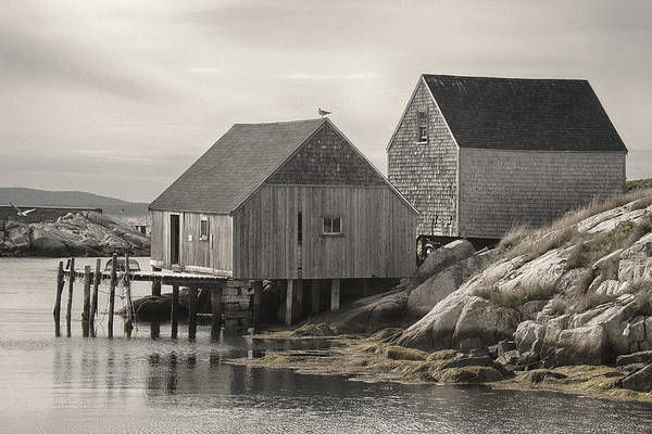 Photograph - Peggy's Cove 2 by WB Johnston