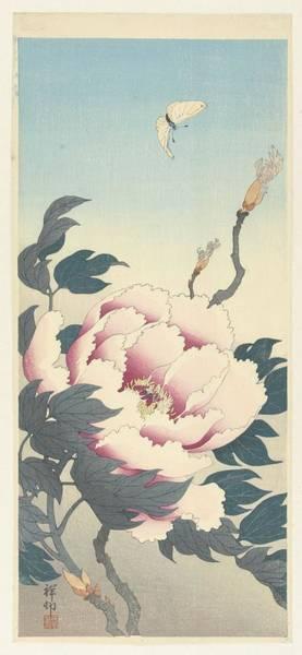 Wall Art - Painting - Peony With Butterfly, Ohara Koson, 1925 - 1936 by Ohara Koson