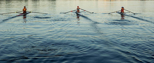 Rowing Wall Art - Photograph - People Rowing Sculling Boats On River by Blend Images/pete Saloutos
