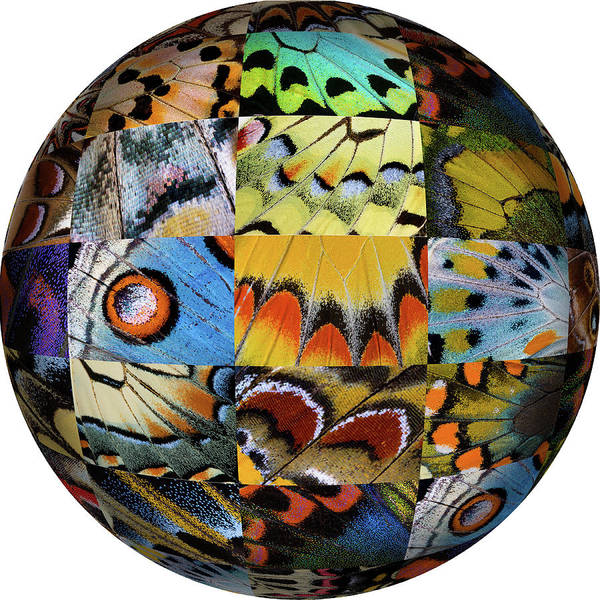 Wall Art - Photograph - Photoshop Designed Globe With Grouping by Darrell Gulin