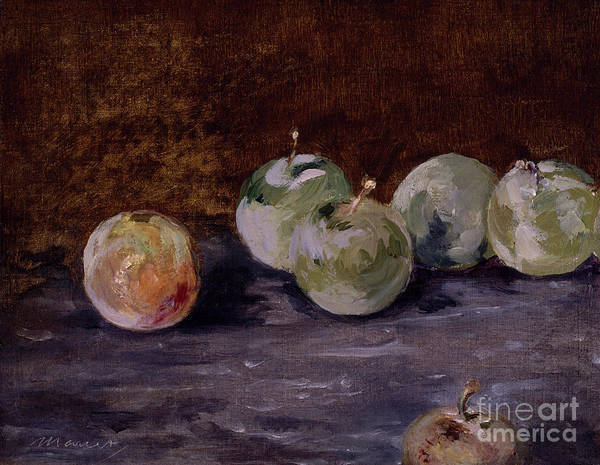 Wall Art - Painting - Plums by Edouard Manet