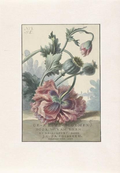 Wall Art - Painting - Poppies, Willem Van Leen, 1804 by Willem van Leen