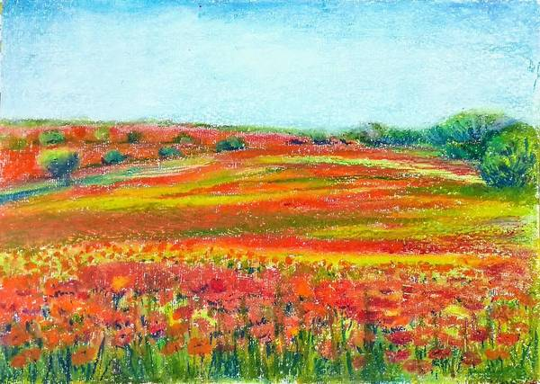 Wall Art - Painting - Poppy Fields by Asha Sudhaker Shenoy