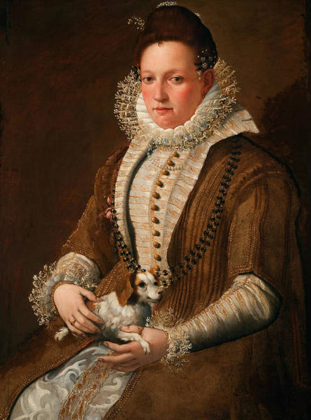 Painting - Portrait Of A Lady With A Dog by Lavinia Fontana