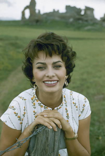 Photograph - Portrait Of Sophia Loren by Loomis Dean