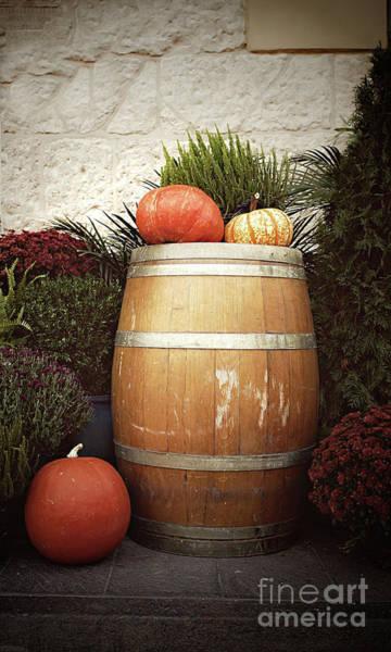 Wall Art - Photograph - Pumpkins Still Life by Tom Gowanlock