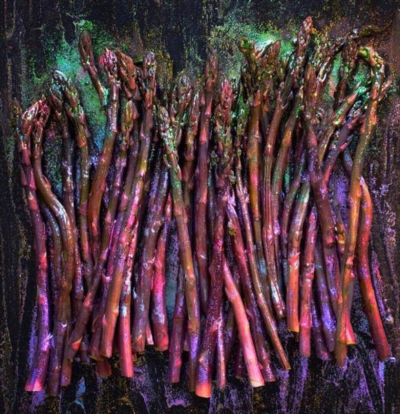 Photograph - Purple Asparagus by Sarah Phillips