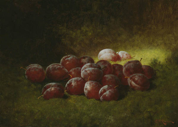 Painting - Purple Plums by Carducius Plantagenet Ream