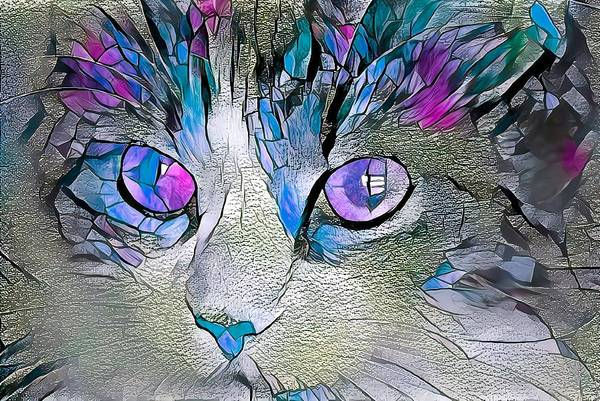 Digital Art - Purple Stained Glass Kitty by Don Northup
