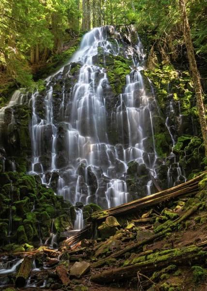 Photograph - Ramona Falls by Brian Bonham