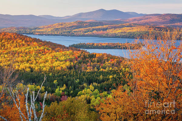 Photograph - Rangeley Lake Fall by Susan Cole Kelly
