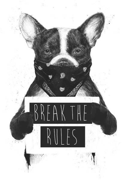 Wall Art - Mixed Media - Rebel Dog II by Balazs Solti
